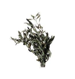 HD Bunch Olive Pres. 150gr x 30
