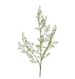 4AT Zijde Limonium 90cm x 6