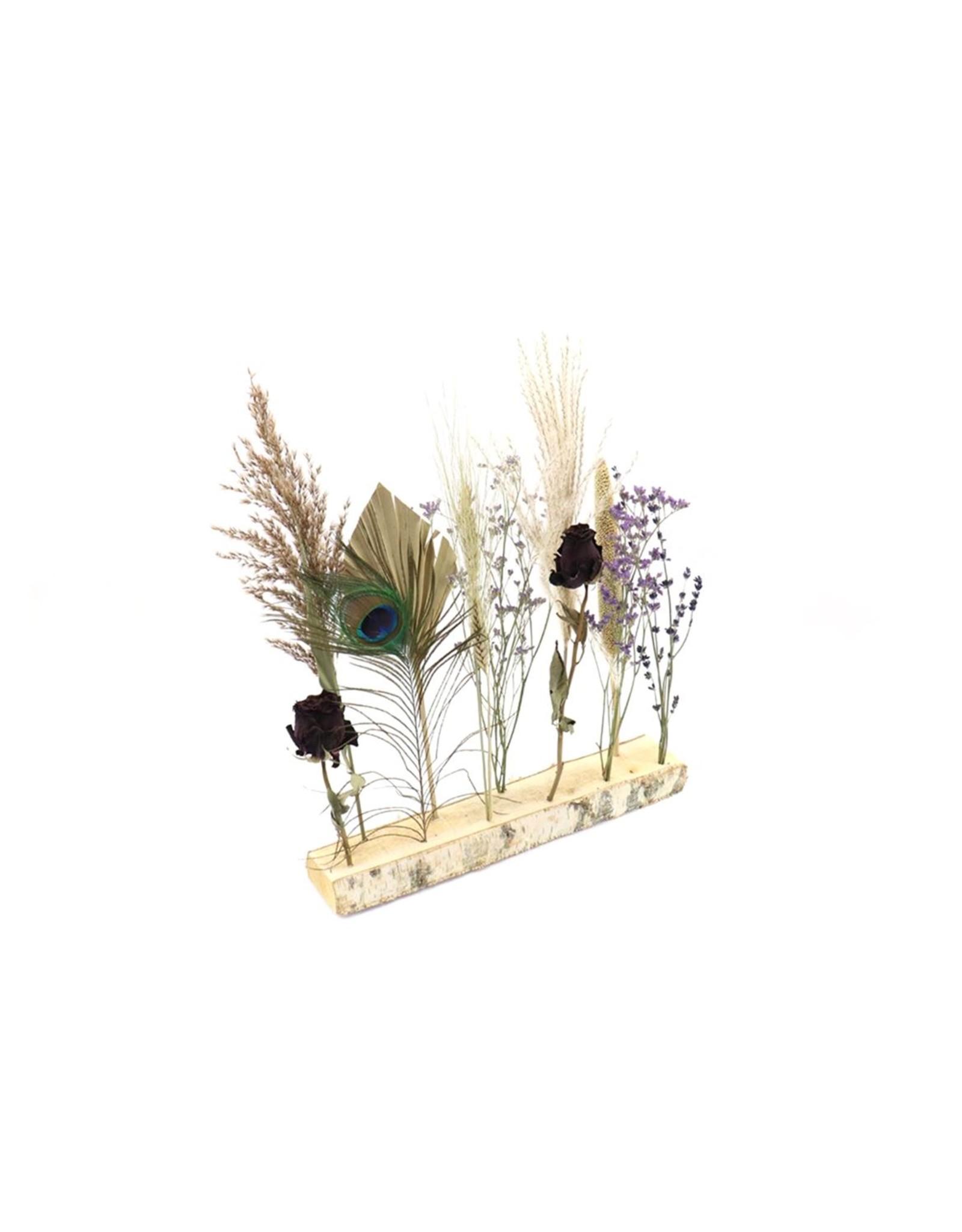 HD Arr. Gedroogde Flowers Noor Ø7-11 ↑40.0 ↑35.0 (x 5)