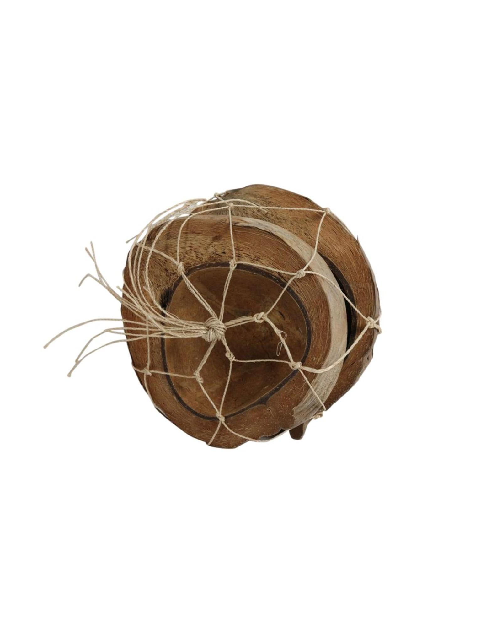 HD Basic Coconut Half 2pc Ø18-20 (x 8)