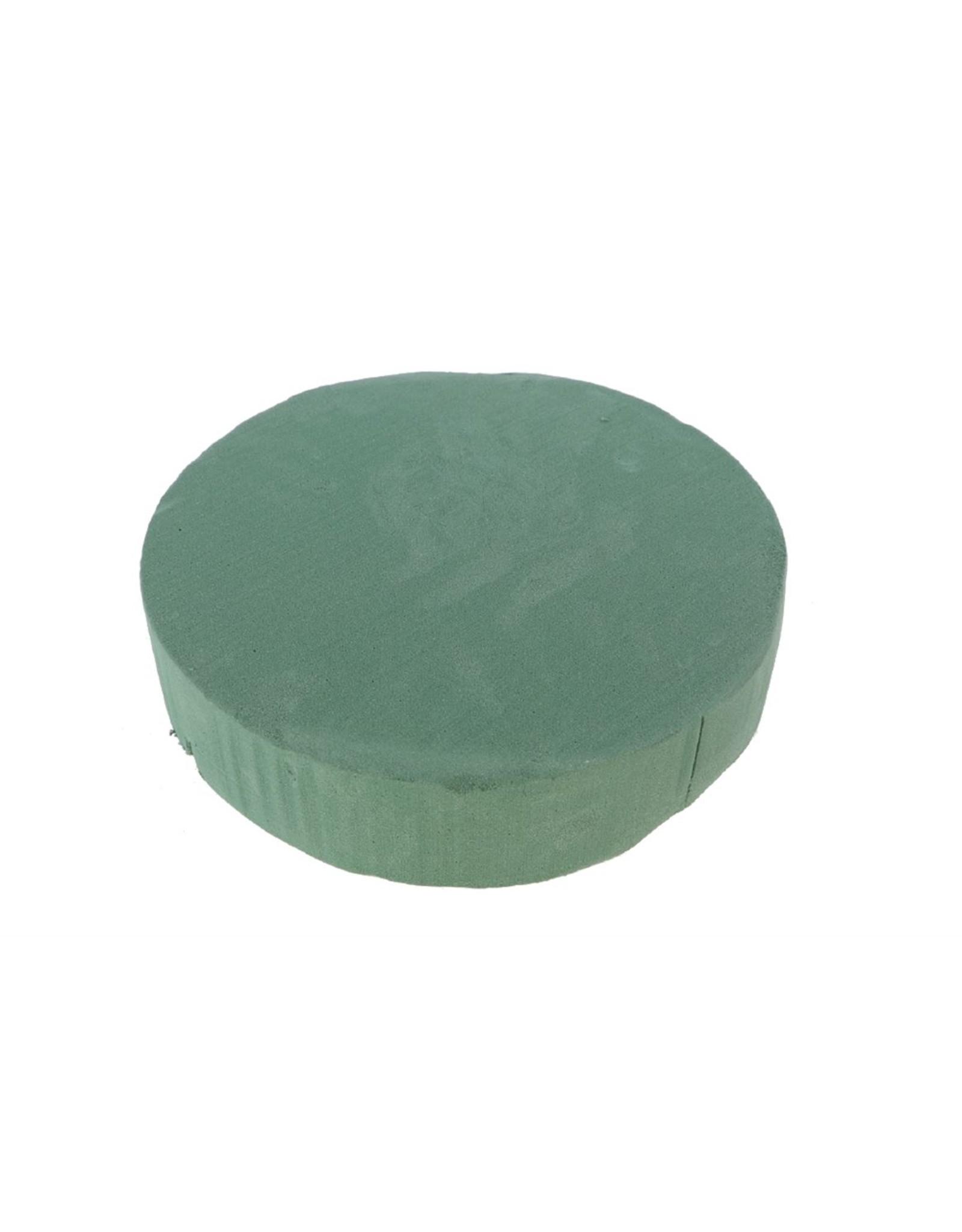 HD Basic Cake Sld Foam D30.0h7.0 x 8