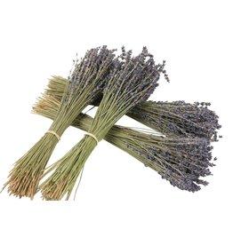 HD Bunch Lavendel 100gr L40 x 40