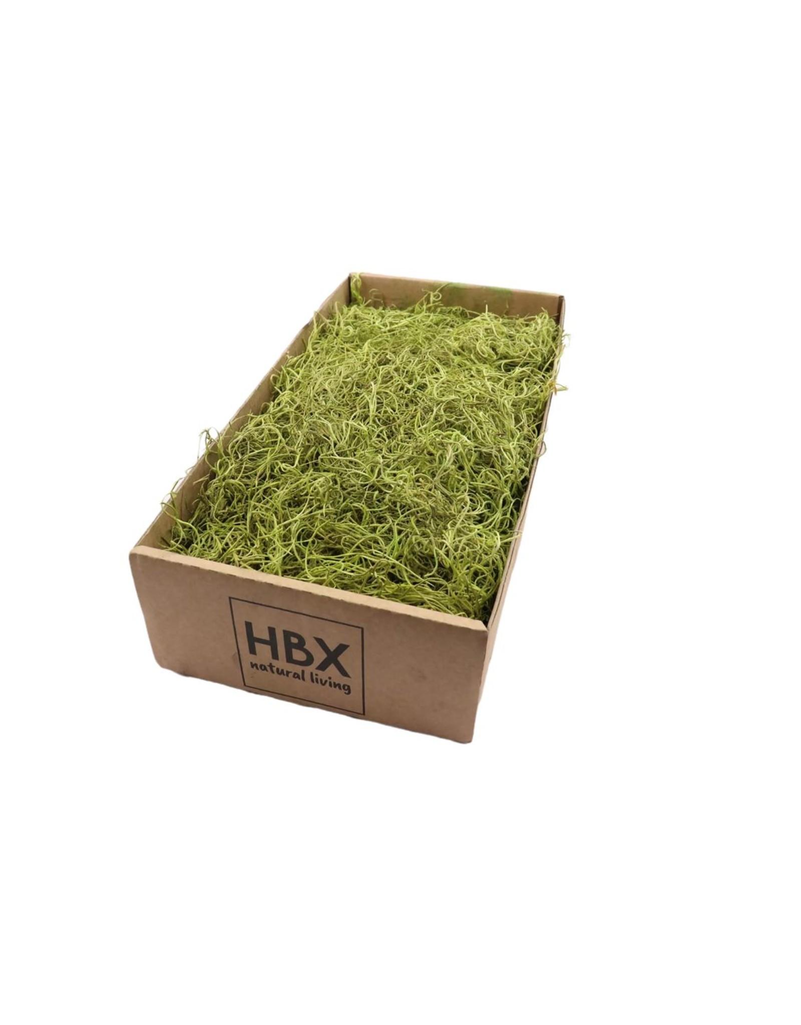 HD Basic Tillandsia Moss gepreserveerde.350gr (x 6)