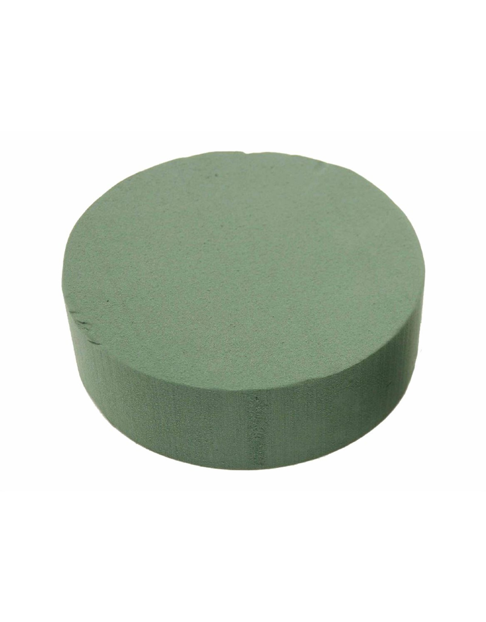 HD Basic Cake Sld Foam D22.0h7.0 x 14