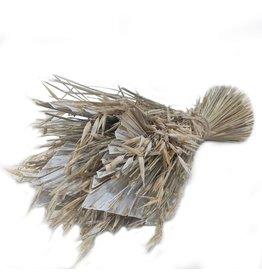 GF Dried Bq Sheaf Avain Palmspear D25 H35 White Wash x 4