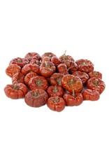 HD Basic Mini Pumpkin Red 100gr x 80