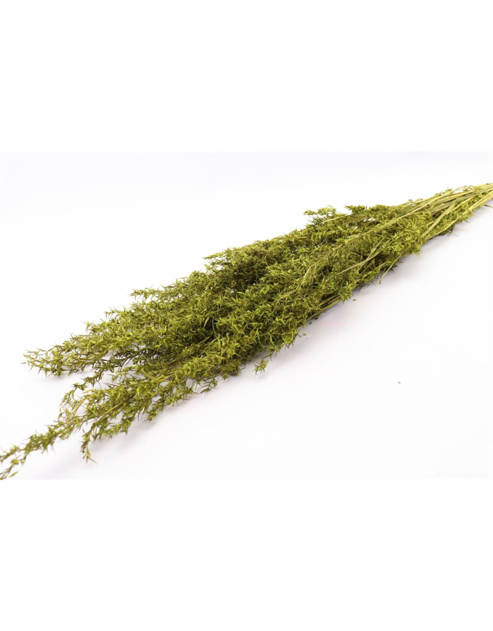 HD bos Beta Grass in hoes 100 gram  ↑100.0 (x 24)