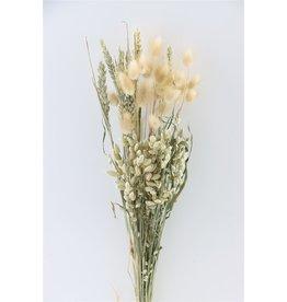 GF Getrockneter Strauß Dutch Grass natürlich (x 10)