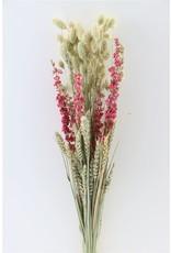 GF Dried bouquet Dutch Edition Natural x 5