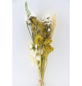 GF Getrockneter Blumenstrauß Dutch Meadow Mixed x 5