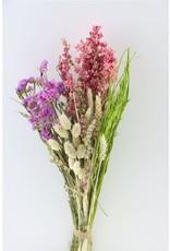 GF Dried bouquet Dutch Parade Natural x 5