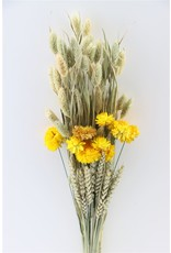 GF Dried bouquet Dutch Selection Natural x 5