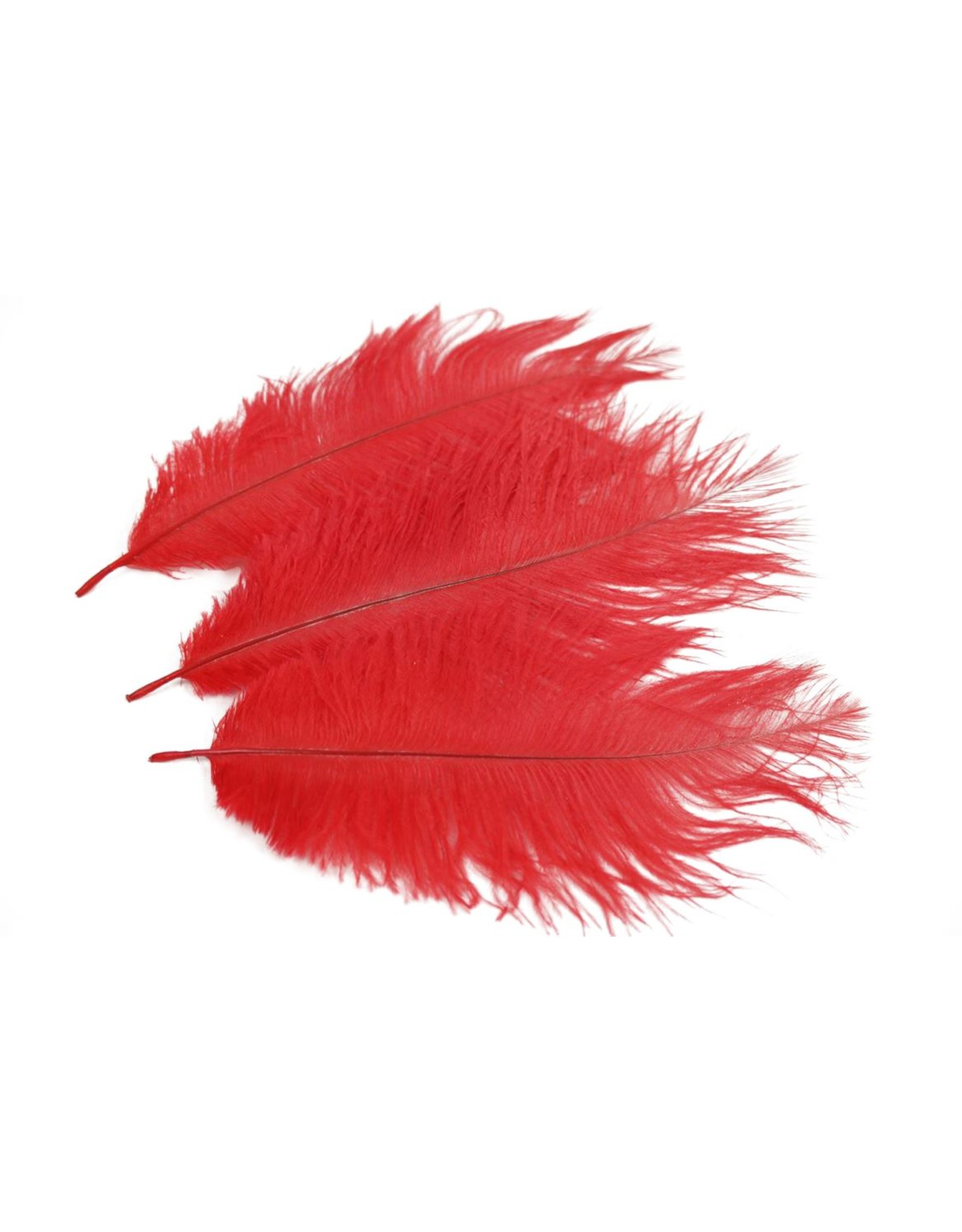 HD Basic Feather Ostrich 3pc 20-25cm x 24