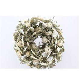 GF Wr Joyfull Lunaria White 25cm x 1