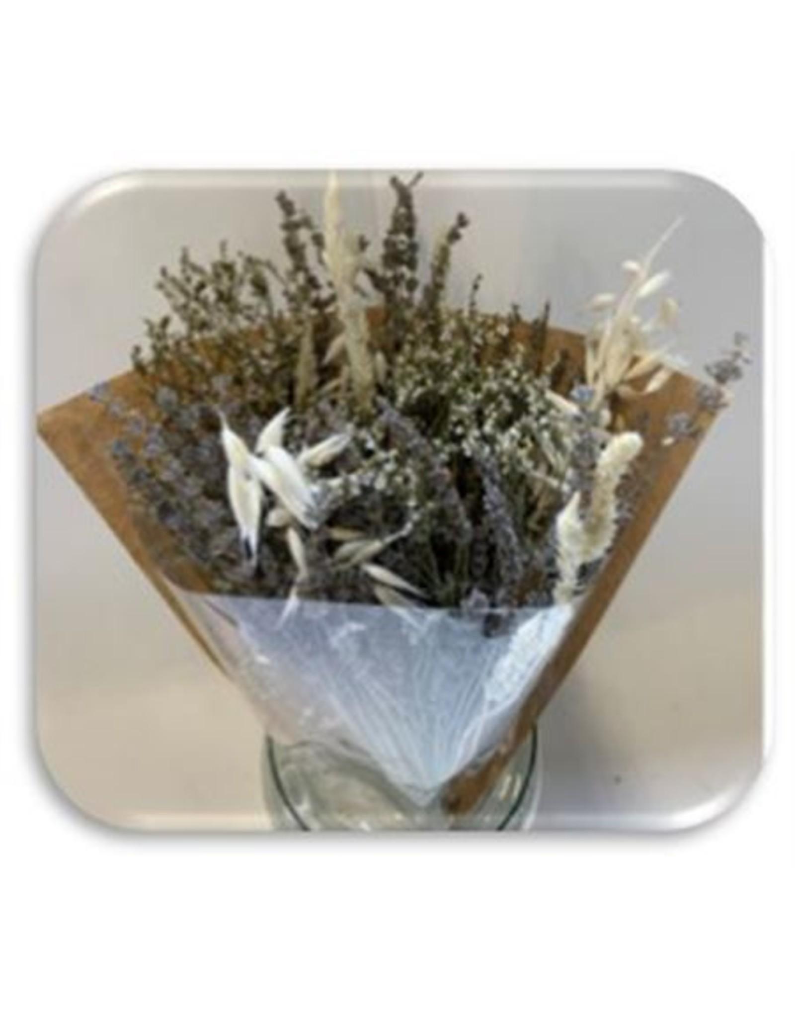 HD Boeket droogbloemen Lavendel Bq2 in hoes ↑50.0 (x 15)