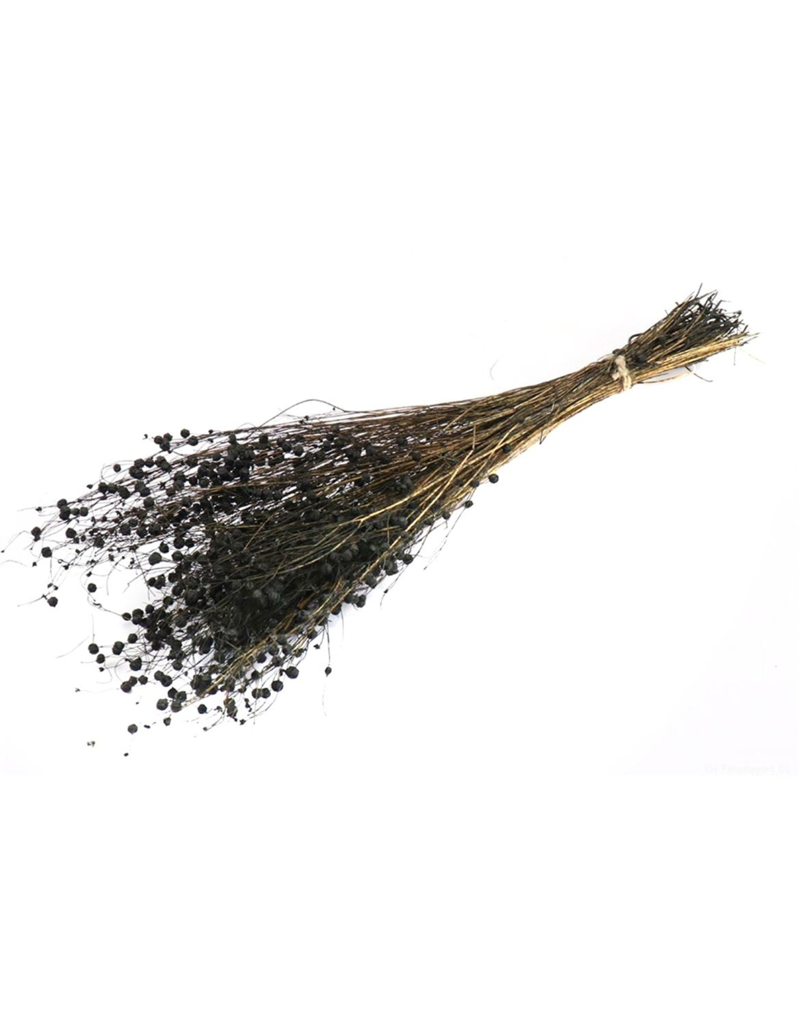 HD bos Alsi Grass in hoes 100 gram  ↑50.0 (x 24)