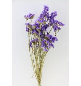 GF Gedroogde Limonium Statice Lavender Bos (X 5)