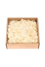 HD Basic Lunaria Leaves P/box per stuk