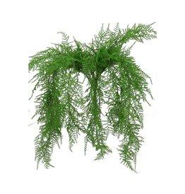 4AT Zijden Asparagus 65Cm Per Stuk