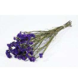 4AT Getrocknete Blume Statice Sinuata 60cm pro stück
