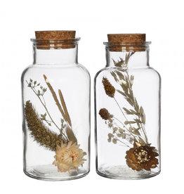 4AT Getrocknete Blume Glas+Getrocknete Blume d08*16cm (x 12)