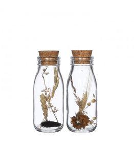 4AT Getrocknete Blume Glas+Getrocknete Blume d06*14cm (x 12)
