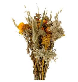 4AT Getrocknete Blume Strauß Dutch 55cm pro stück