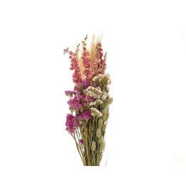 GF Trockenblumen strauß Dutch rosa natürlich (x 3)