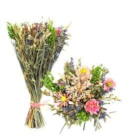 GF Trockenblumen strauß Sheaf Spiny Corn Ø27  ↑45 rosa (x 4)