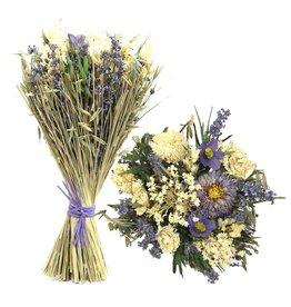 GF Droogbloemen Boeket Droogbloemen Sheaf Spiny Corn Ø27  ↑45 Lavender (X 4)