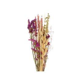 GF Trockenblumen strauß Dutch Luxe 1 gemischte Farben  (x 3)