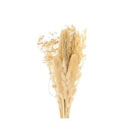 GF Trockenblumen strauß Dutch Babala Luxe gebleicht (x 2)