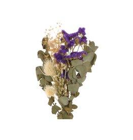 GF Trockenblumen strauß Dutch blau gemischte Farben  (x 4)