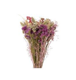 GF Trockenblumen strauß Dutch Luxe 2 gemischte Farben  (x 3)