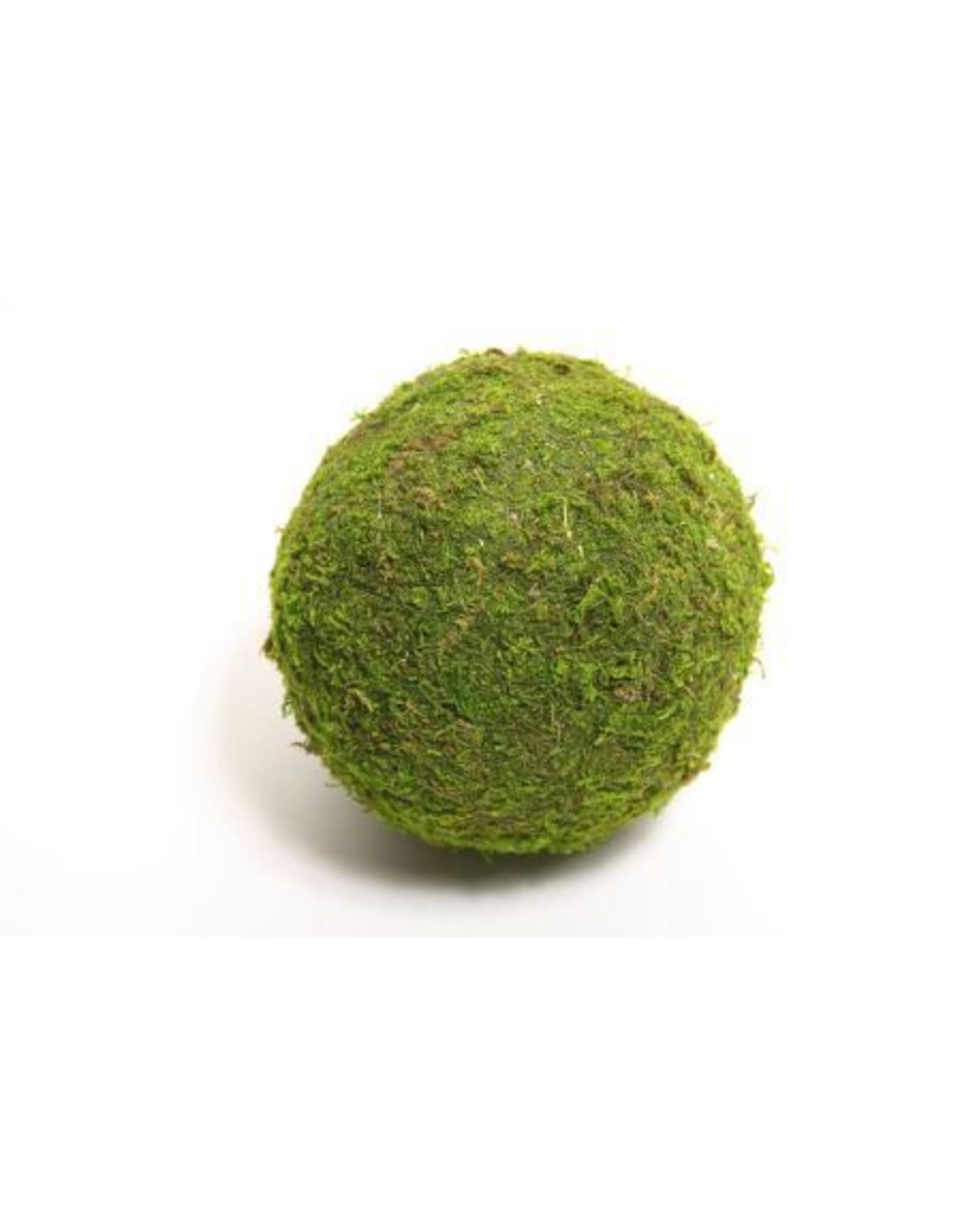 HD Ball Asia Moss  Ø10.0 (x 48)