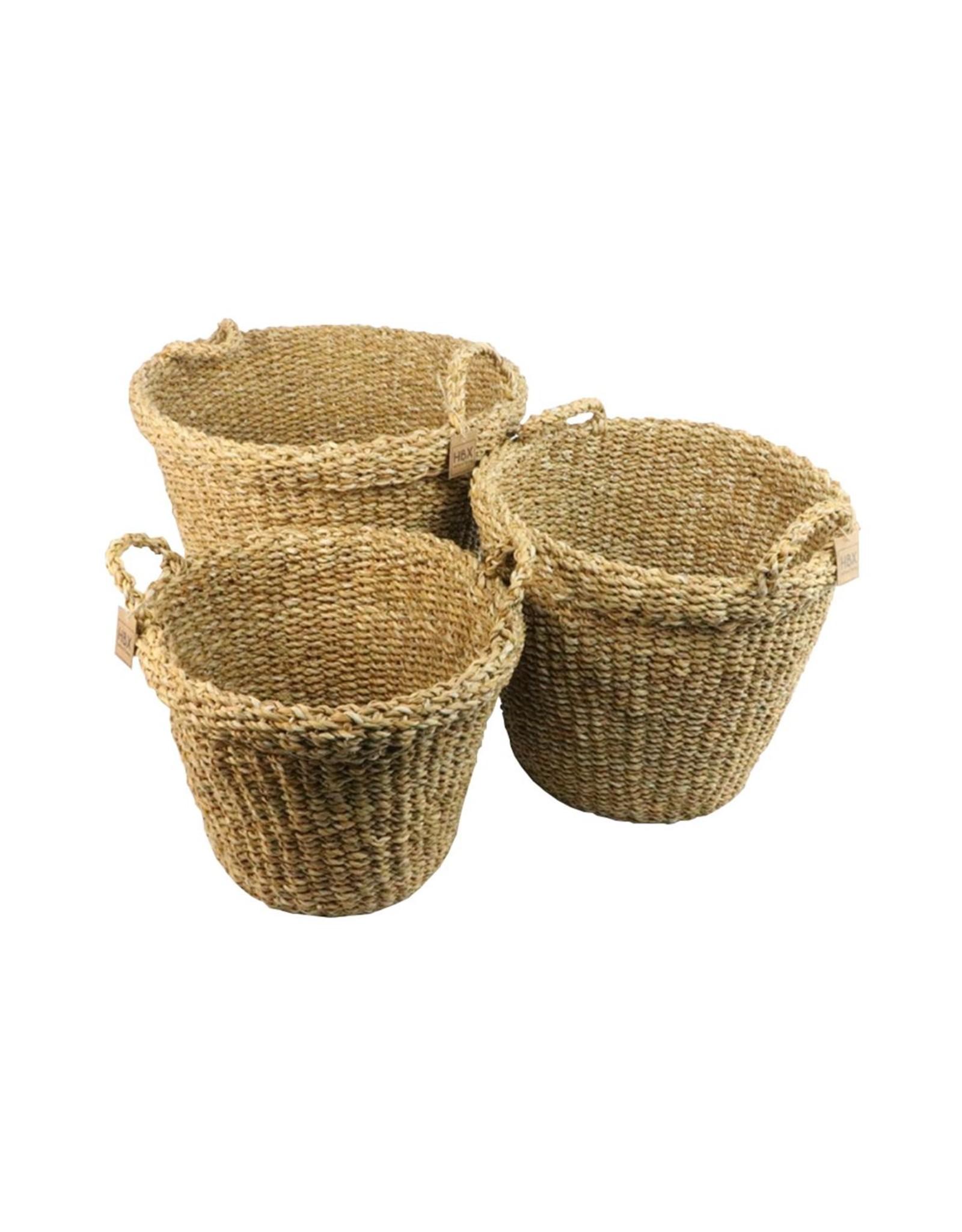 HD Bask. Manatee Grass S/3 (x 1)