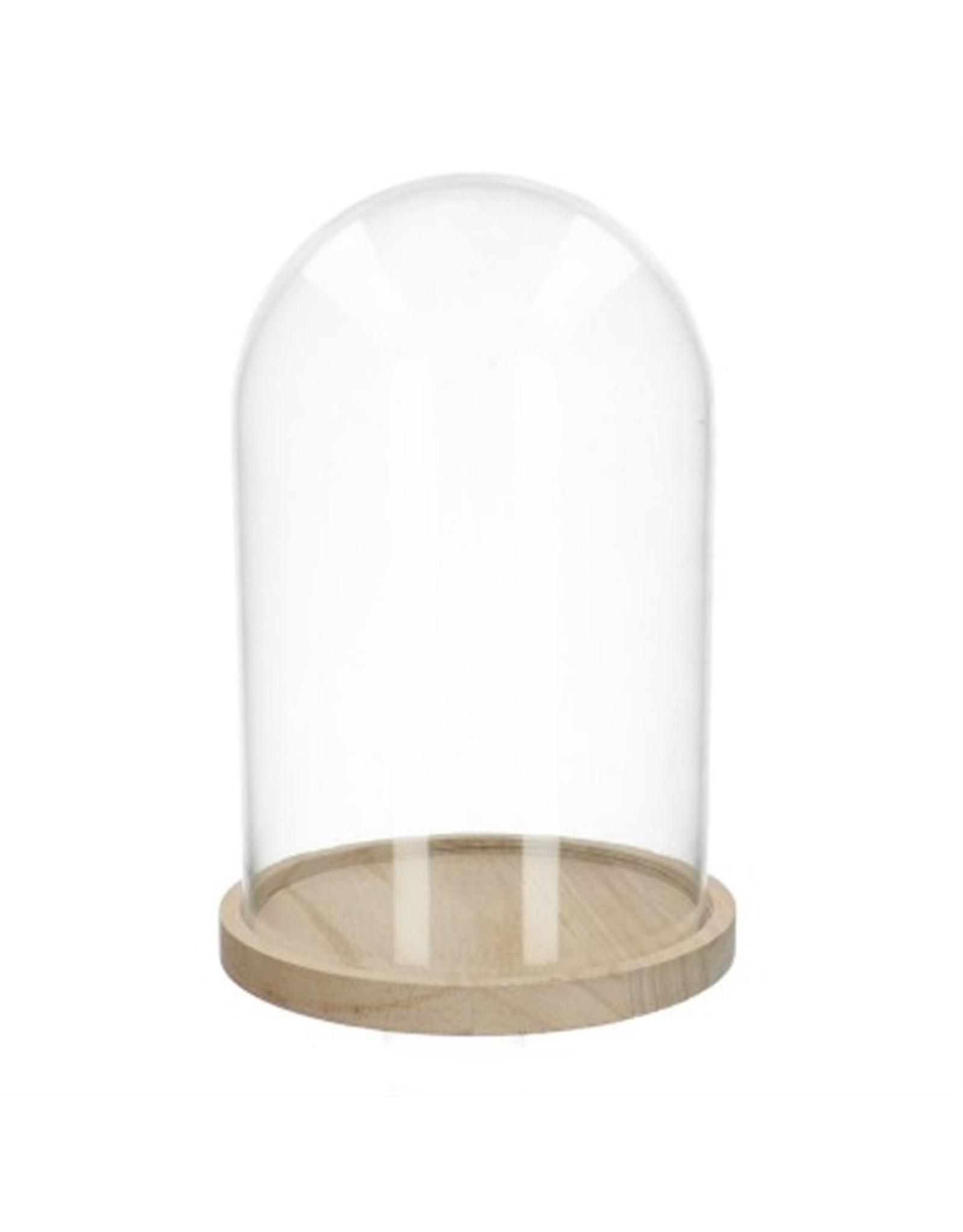 HD Basic Glass Dome W. Wood Base Ø12.0 ↑20.0 (x 12)