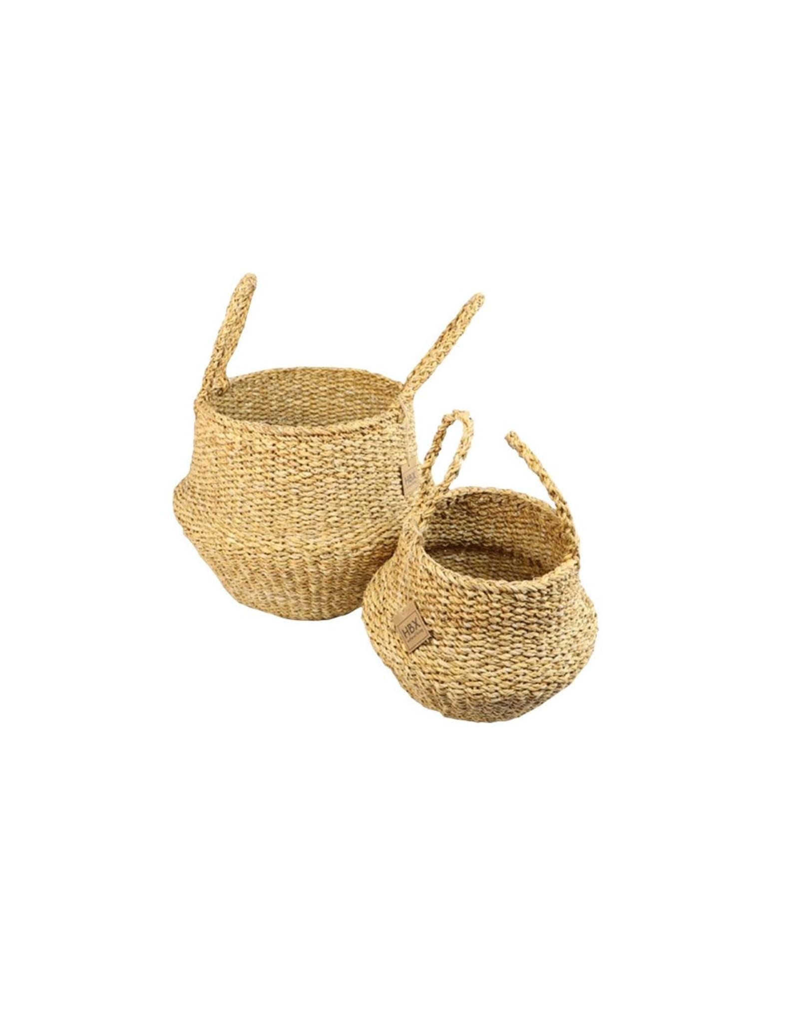 HD Bask. Manatee Grass S/2 ( x 1 )
