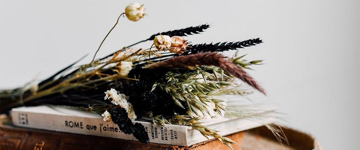 Der Großhändler für Trockenblumen! Größtes Trockenblumensortiment in ganz Europa!