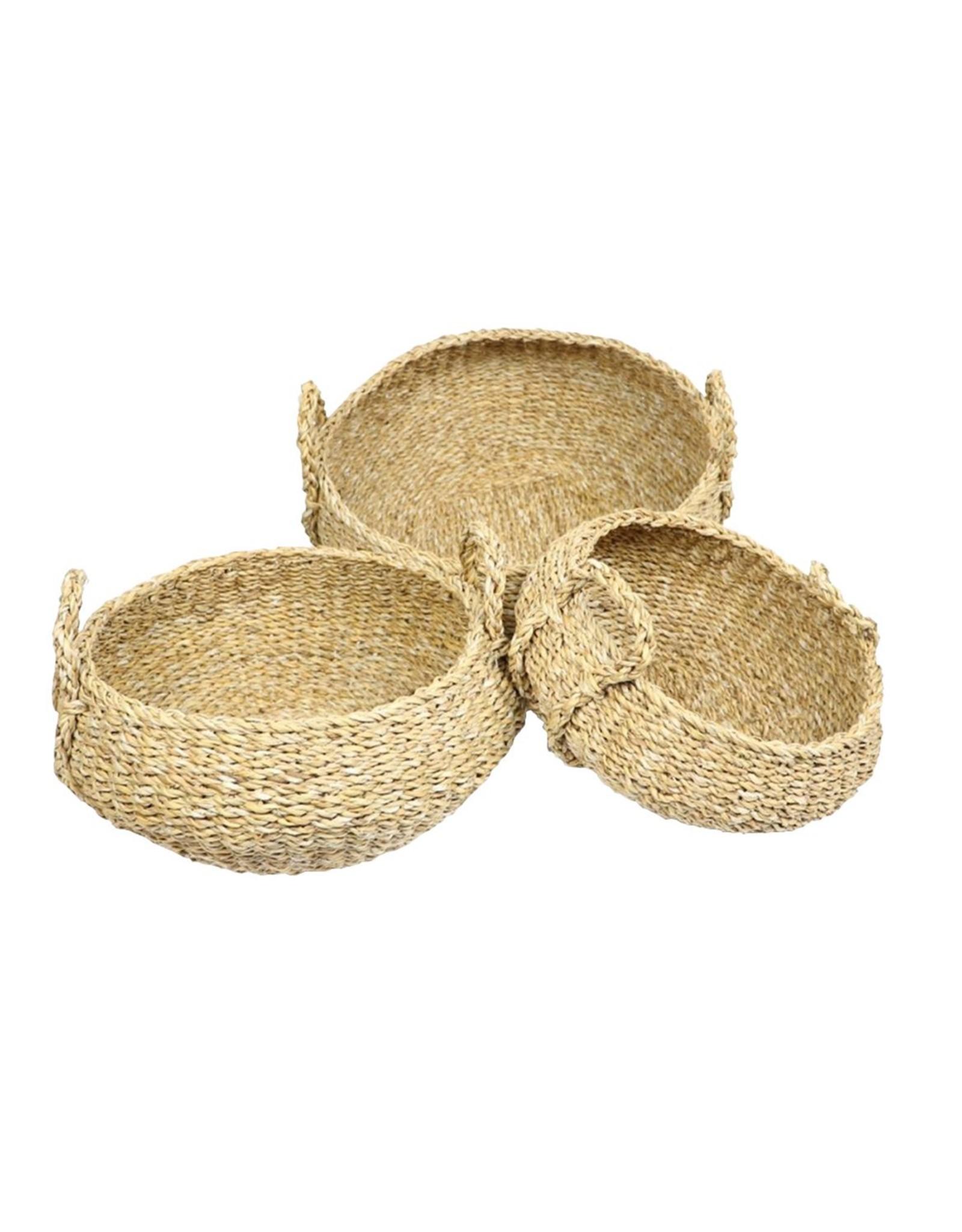 HD Bask. Manatee Grass S/3 ( x 1 )