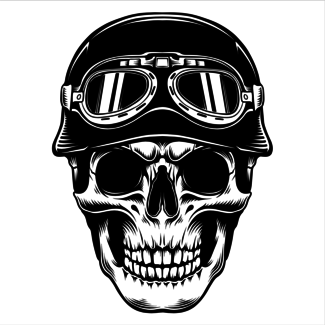 ViceVinyls Race skull
