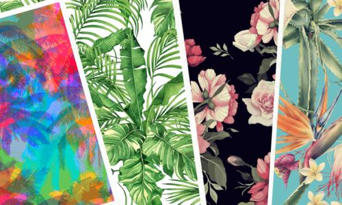 Bloemen | planten serie