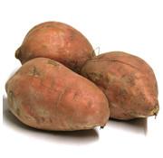 GF Zoete aardappelen 1kg