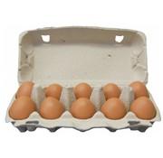 Wegdam Scharrel  eieren maat M - 10stuks