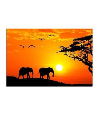Schilderij Afrikaanse olifanten , 4 maten , oranje zwart (wanddecoratie)