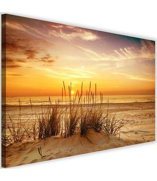 Schilderij Duingras, 2 maten, multi-gekleurd, Premium print