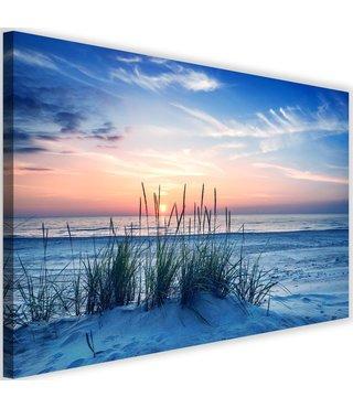 Schilderij Duingras, 2 maten, blauw, Premium print