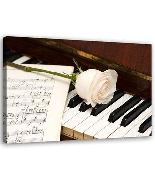 Schilderij Witte roos op een piano, 2 maten, Premium print
