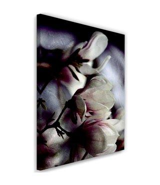 Schilderij Magnolia knoppen, 2 maten, multi-gekleurd, Premium print