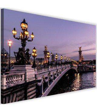 Schilderij Bridge Alexander-III in de avond, 2 maten